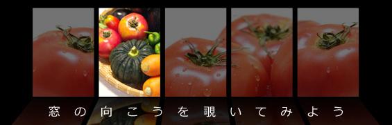 第16回 栄養 【ファイトいーよ、ファイトケミカル】