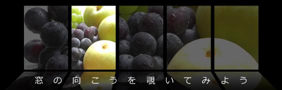 第21回 栄養 【甘い誘惑、フルーツの秋】