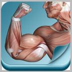 筋肉暗記(iPhone/Android アプリ)