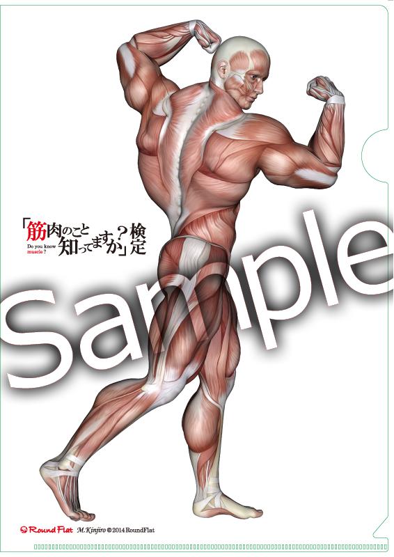 筋肉ステーショナリーセット